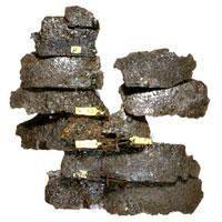 placas segmentata